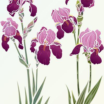 Iris-stencil-1and2-g5