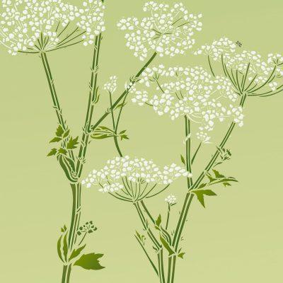 giant-hogweed-stencil5