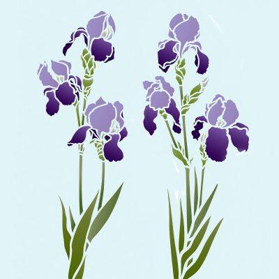 iris-little-stencil-3C6
