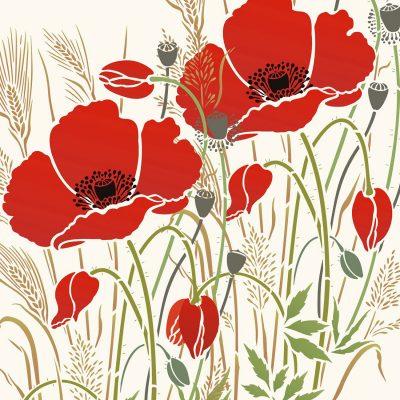 238-poppy-grassesC15