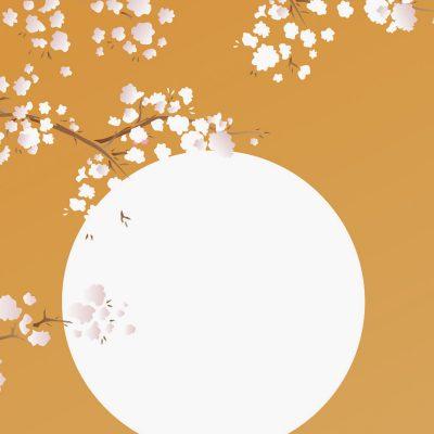 cherry-blossom-details