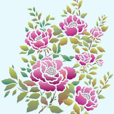 china-rosep3
