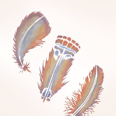 feathers-stencil