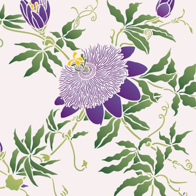 passionflower-c6b
