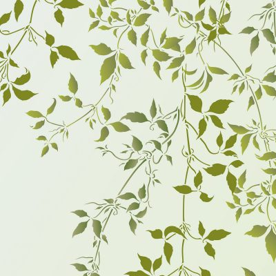 trailing-clematis-leaves-stencil
