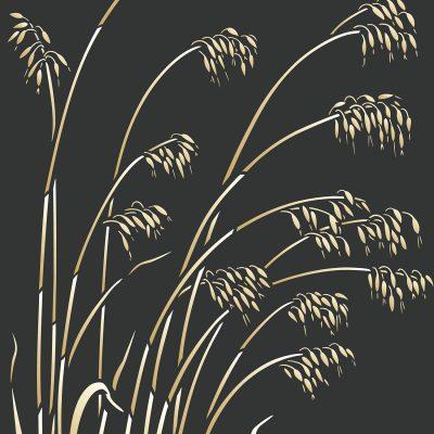 wild-oats-C11