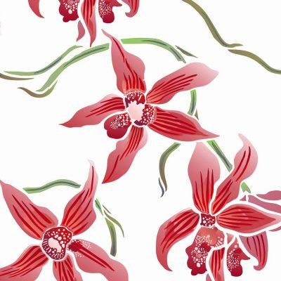 wild-orchid-p15