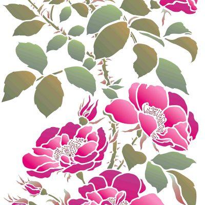 wild-rose-large