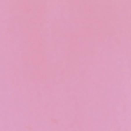plum_blossom
