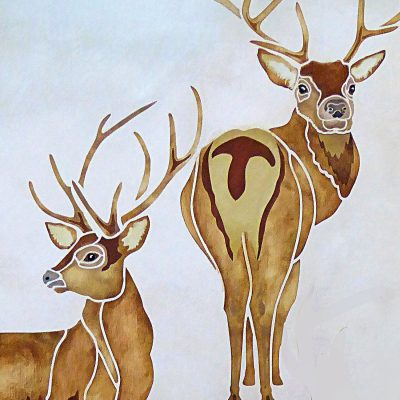 wild-stags-p6